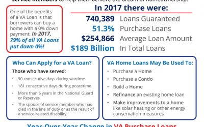 VA Home Loans by the Numbers [INFOGRAPHIC]